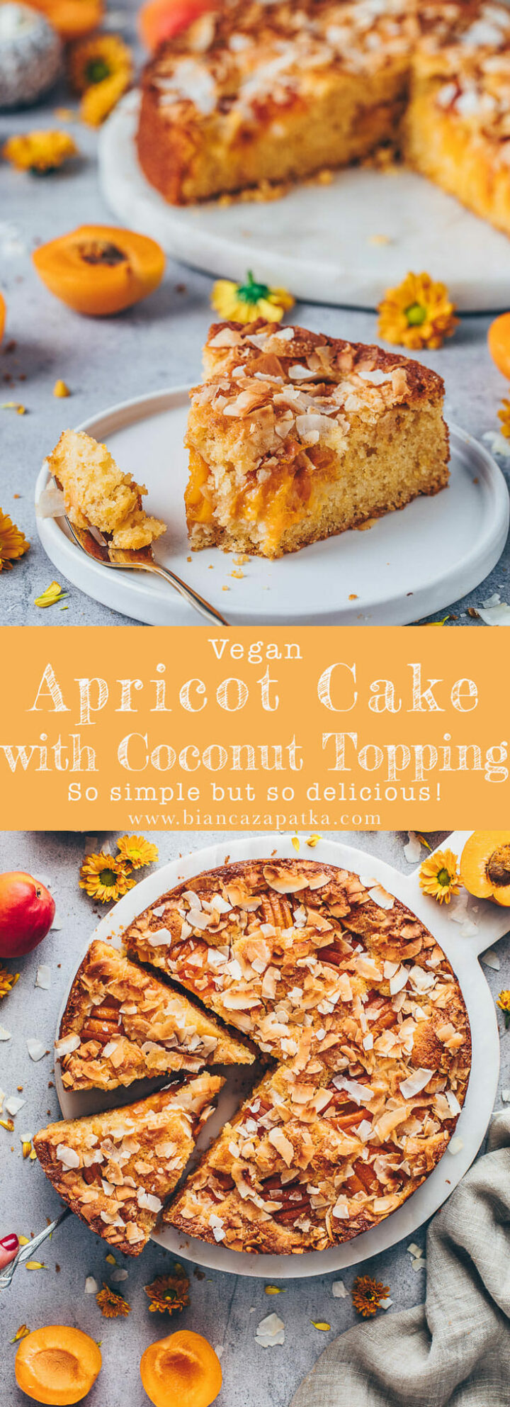 apricot cake with coconut topping