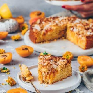 moist and juicy apricot cake with coconut