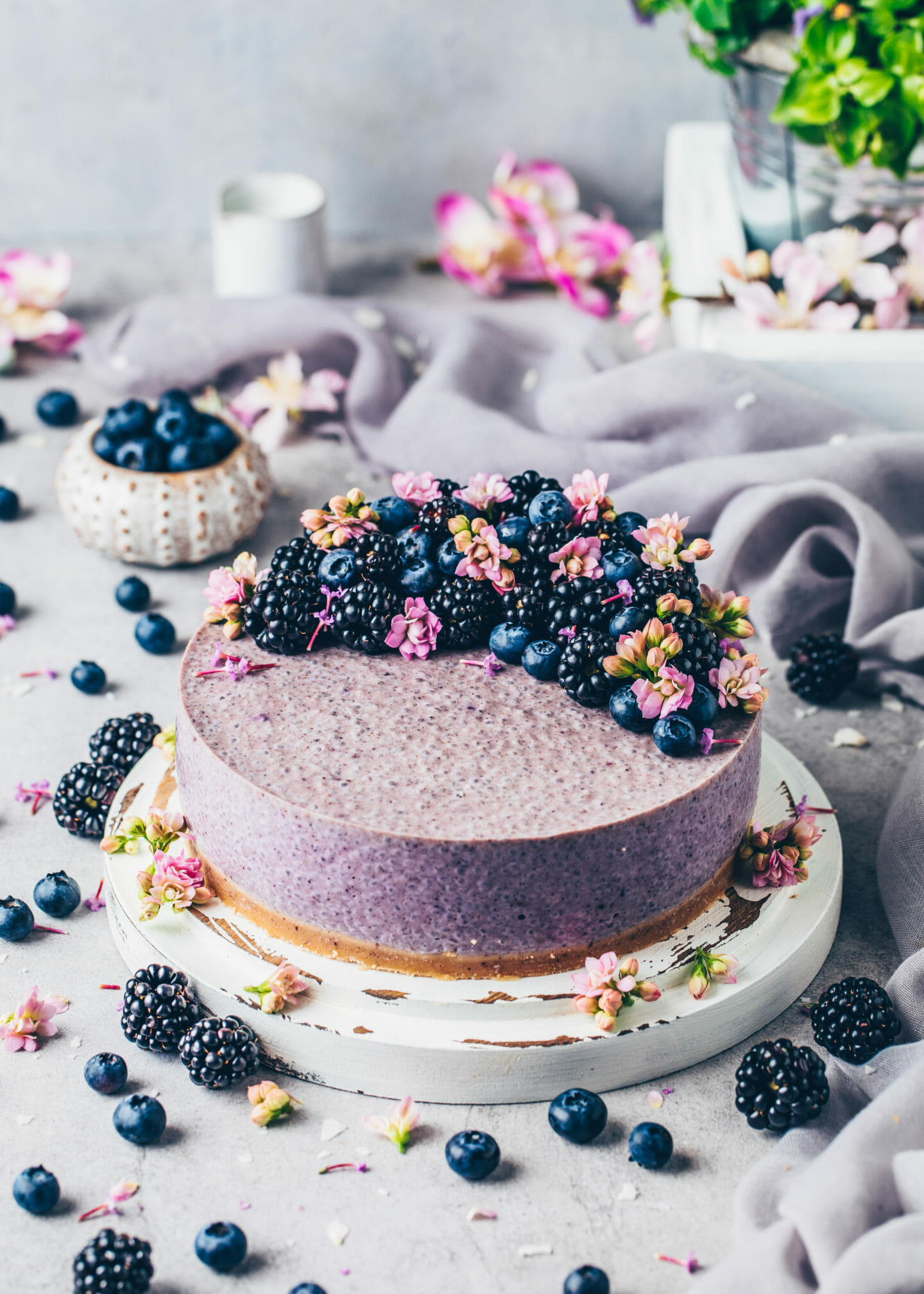 Blueberry Chia Joghurt Torte (Food Fotografie)