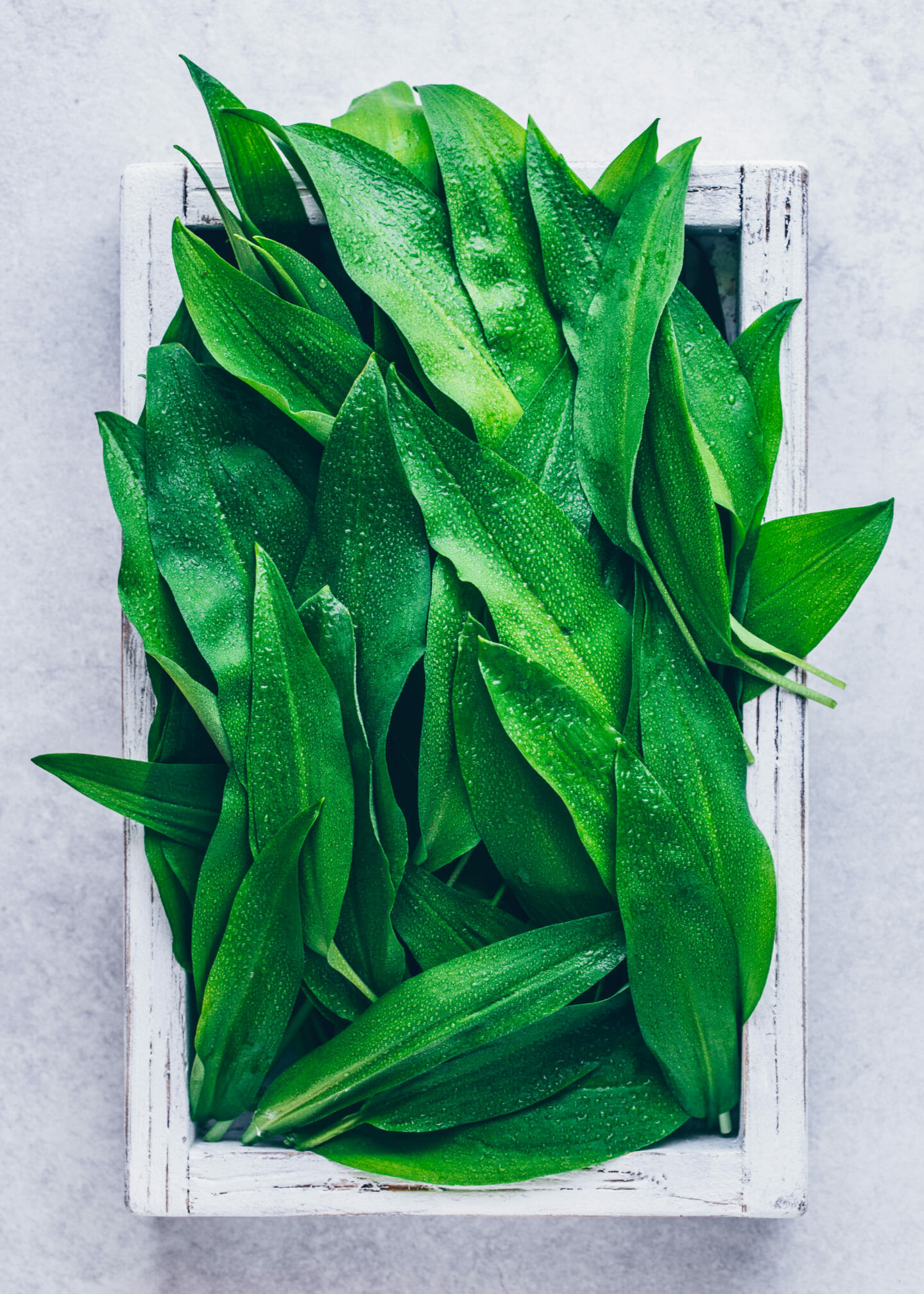 wild garlic (food photography)